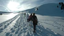 Snowshoe Tour from Interlaken, Interlaken