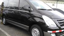 Transfer Arenal & Fortuna to the Airport or San José, La Fortuna, Airport & Ground Transfers