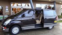 Transfer from San Jose or Airport to Hotel RIU Guanacaste, San Jose, Airport & Ground Transfers