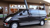 Transfer Private from Tamarindo to San Jose or Airport, La Fortuna, Airport & Ground Transfers