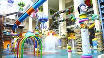 Woongjin Playdoci Multi-Leisure Park Tickets, Seoul, Theme Park Tickets & Tours