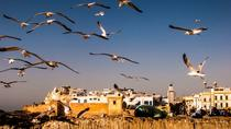 Private Full Day Tour to Essaouira Mogador from Marrakesh, Marrakech, Full-day Tours