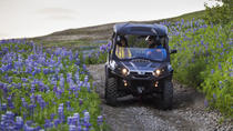 1-Hour 'Buggy Safari' Buggy Adventure from Reykjavik, Reykjavik, 4WD, ATV & Off-Road Tours