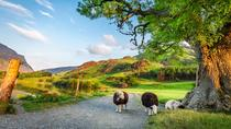 4-Day York, Durham and the Lake District Tour from Edinburgh, Edinburgh, Day Trips
