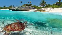 5 Days at the Aventura Mexicana with Included Day Excursions to Tulum and Xel-Ha, Playa del Carmen