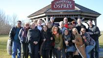 Long Island Wine Tour from Manhattan, New York City, Wine Tasting & Winery Tours