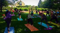 Yoga in the Vineyard from Manhattan, New York City, Wine Tasting & Winery Tours