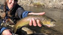 Solo Angler's Private Full Day Fly Fishing Adventure, Yosemite National Park, Fishing Charters & ...