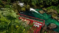 SPA ON THE RIVER, Ubud, Day Spas
