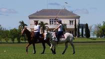 Become a Polo Player: Day Trip to Puesto Viejo Estancia, Buenos Aires