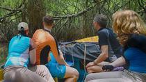 Madu River Boat rides, Bentota, Day Cruises
