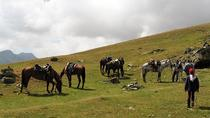 Rila Trail Riding for Experienced Riders, Sofia, 4WD, ATV & Off-Road Tours