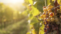 Private Tour: Tokaj Wine Country Day Trip from Budapest, Budapest, Day Trips