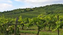 Tokaj Wine Country Day Trip from Budapest, Budapest, Day Trips