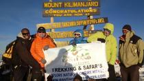 8 days Kilimanjaro trekking via Lemosho route, Kilimanjaro, Private Sightseeing Tours