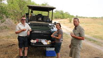 Majestic 6 Nights Camping!Khwai Development Trust,Savuti, Chobe River Front, Maun, Hiking & Camping