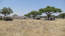 Wild Africa Safaris Magnificent Mobile Tented Camping Safaris In Botswana, Kasane, Hiking & Camping