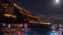 Scuba night dive on Tenerife with SCUBANANA, Tenerife, Scuba Diving