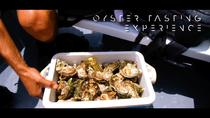 Segway Surf and Oysters!, Faro, Segway Tours