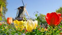 Day Trip to Keukenhof Garden and Flowerfields from Rotterdam, Rotterdam, null