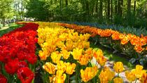 Day trip to Keukenhof Garden and Flowerfields from The Hague, Den Haag