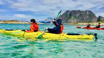 Trollfjord and Wildlife Cruise with Guided Kayak, Lofoten, Kayaking & Canoeing