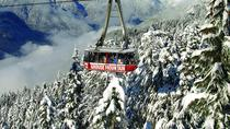 Grouse Mountain Admission - Alpine Experience, Vancouver, Attraction Tickets