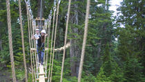 Grouse Mountain Ropes Adventure, Vancouver, 4WD, ATV & Off-Road Tours