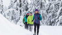 Grouse Mountain Snowshoe Rental, Vancouver, Ski & Snow