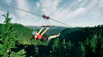 Grouse Mountain Zipline Adventure, Vancouver, Private Sightseeing Tours