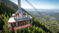 Skyride Surf Adventure al Grouse Mountain, Vancouver, Attraction Tickets