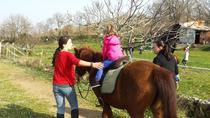 Horse riding, Dubrovnik panorama, fun for kids at Honey valley near Dubrovnik, Dubrovnik, Kid ...
