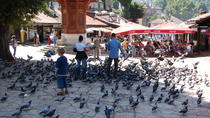 Mostar, Sarajevo with Tunnel of Hope one-day private tour from Dubrovnik, Dubrovnik, Private...