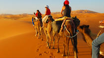 Multi Day Trip From Marrakech to Fes Via Sahara Desert, Marrakech, Day Trips