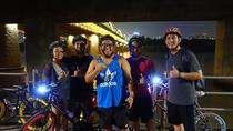 Seoul Han River Night Tour by Bike, Seoul, Bike & Mountain Bike Tours