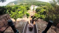 3-day Cradle of Human Kind, Sun City and Pilanesberg Big 5 Tour