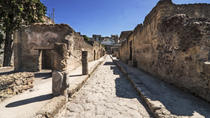 Private Tour: Herculaneum Rail Tour from Sorrento, Sorrento