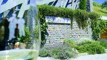 Wine & more Tour , private guided wine tour from ROVINJ & PULA to wine cellars