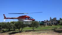 Private Tour: San Diego Helicopter Flight to Temecula Winery, San Diego, Bike & Mountain Bike Tours