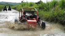 Buggy Tour from Sosua, Cabarete, Day Trips