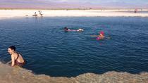 Laguna Cejar, San Pedro de Atacama, Day Trips