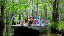 New Orleans Swamp and Bayou Boat Tour With Transport, New Orleans, Day Cruises
