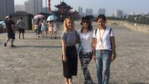 Customized Xi'an Highlight Day Tour, Xian, Day Trips