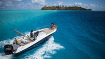 Private Bora Bora Lagoon Snorkel Cruise, Bora Bora, 4WD, ATV & Off-Road Tours