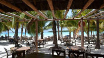 4-Hour Caribbean Beach Fun and Relaxation in Boca Chica from Santo Domingo, Santo Domingo, null