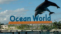 Ocean World Adventure Park Day Trip from Santo Domingo, Santo Domingo