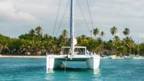 Saona Island Catamaran Cruise from Santo Domingo