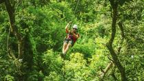 Zipline at Wild Ranch Adventure Park and Kayak Tour on the Chavon River from Santo Domingo, ...