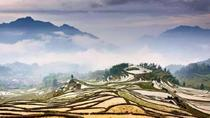 One Day Yunhe Rice Terrace & Countryside Discovery Tour, Hangzhou, Day Trips