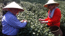 Private Tour: Hangzhou Tea Culture Day Tour, Hangzhou